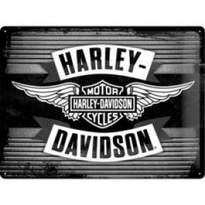 HARLEY DAVIDSON SILVER WINGS