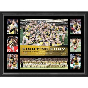FIGHTING FURY PREMIERS TRIBUTE FRAME