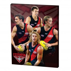AFL ESSENDON 4 PLAYER CANVAS