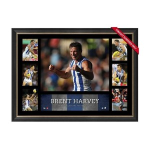 BRENT HARVEY SUPER FRAME