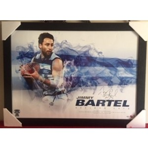 AFL JIMMY BARTEL