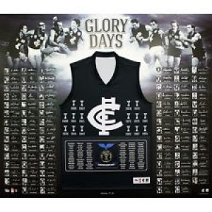 CARLTON BLUES OFFICIAL AFL GLORY DAYS 88 SIGNATURES FRAMED GUERNSEY