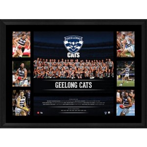 GEELONG 2016 PREMIERGRAPH FRAMED