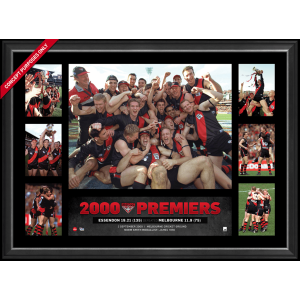 ESSENDON 2000 PREMIERS SUPER FRAME