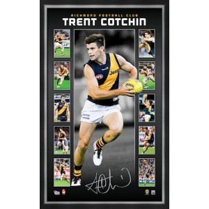 TRENT COTCHIN VERTIRAMIC - SIGNED & FRAMED
